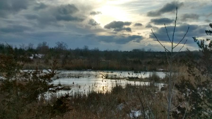 Frozen field site
