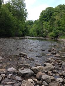 Highland Creek